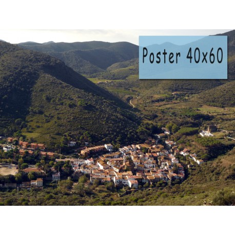 Poster 40x60 one hour photo service for Fenetre 40x60