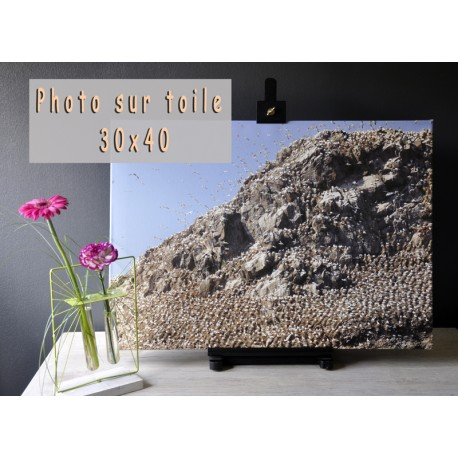 Photo sur toile 30x40
