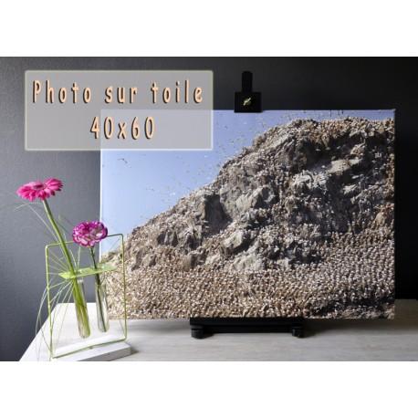 Photo sur toile 40x60