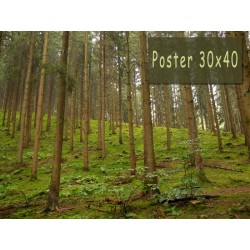 Poster 30x40